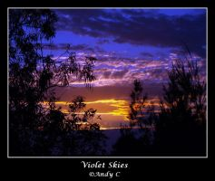 Violet Skies by 2Stupid2Duck