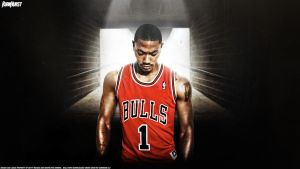 Derrick Rose 'The Arrival' by rhurst