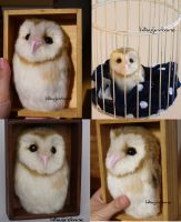 Needle felted Barn Owl 2-2 by sheeps-wing