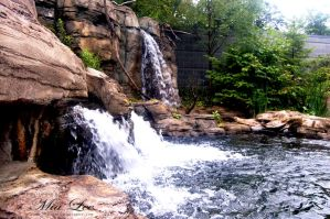 Water fall Pittsburgh Zoo 2006 by MiaLeePhotography