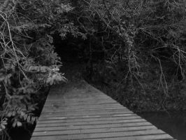 Path to Nowhere. . . by xdogs4everx