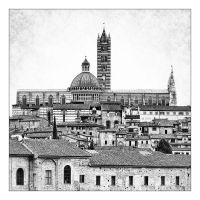 Siena Cathedral by crh