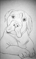 Weekly Drawing 08: Puppy by McKravendrawings