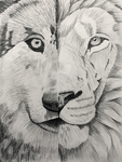 Wolf and Lion by sexykyo