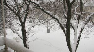 First Snowfall in Sarnia 2008 by dmjh30