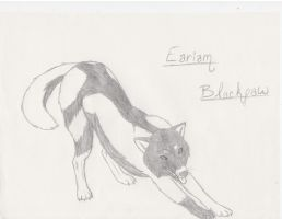 Eariam Blackpaw by Migoto-Ookami