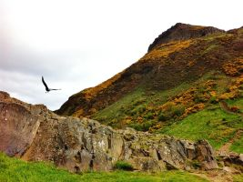Arthur's Seat by Highcontrastworld