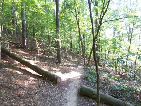Hiking 004 - August 2011 by hXcpunk23