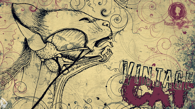 Vintage Cat Wallpaper by lucasitodesign