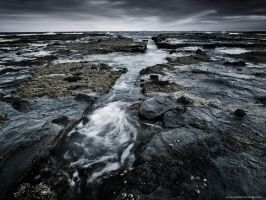 Low Tide by eastonchang