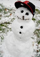 Vanilla Ice Snow Man by billxmaster