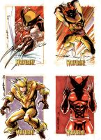 Wolverine Sketch Cards 03 by Cinar