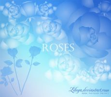 Roses - PS brushes by Lileya