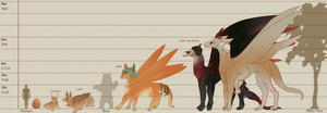 Caeli Height and Age - Visual Reference Sheet by ImperfectEnthusiast