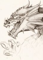Dragon by Nachiii