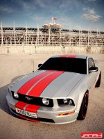 FORD MUSTANG VI by janahi-photography