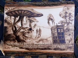 Doctor Who - Wood burning + quote by brandojones