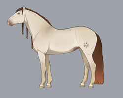 Seraph import for OlympianStables by goats