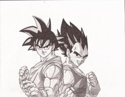 Goku and Vegeta by superheroarts