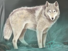 WOLF PAINT by Rhaine-Horses