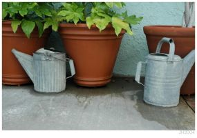 Watering Cans by ThreatconDelta