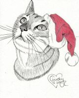 Christmas Cat by Cindy-R