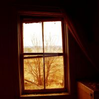 Window Pain by photographygirl13