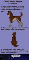 Wolf Pose Meme by Tephra76