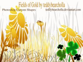 Fields of Gold by teddybearcholla