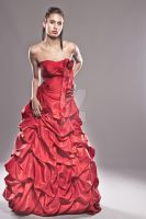 Red Wedding Dress by androxstudio