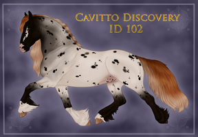 Cavitto Discovery ID 102 by Cloudrunner64