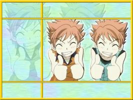 OHSHC - Hitachiin Twins BG by mdchan