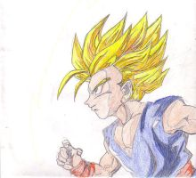 young trunks by duxfox