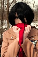 winter photo attack on titan 6 by superjacqui