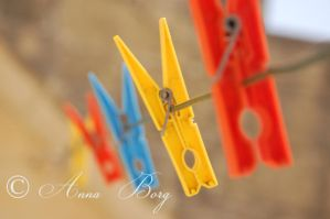 playing with focus by borga2271