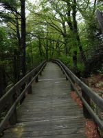 Walkway by Nept
