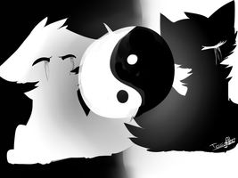 Ying and Yang by GummiRainbow
