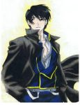 Roy Mustang by bluesummers8