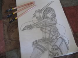 Attack on Titan - Mikasa (pov) by TheMilitia