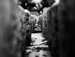 Path Of Stone by momentspause