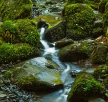 slow water by svendo