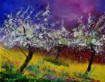 Appletrees in blossom by pledent