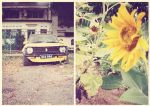 bees like flowers diptych by yyelsel