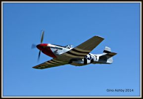 P51D Mustang Fly Over by StallionDesigns