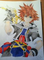 Finished version of Sora from KH by IxXNikkiXxI