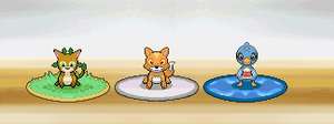 What CRAVAS STARTERs do you choose ? by WesleyFG