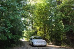 Wooded Volkswagen by KateKannibal