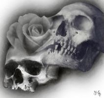 skull rose merge 1 by BMXNINJA