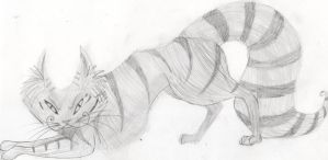 Cheshire Cat by katykat2011