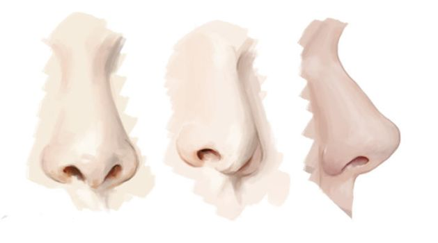 Noses 01 by Keililly